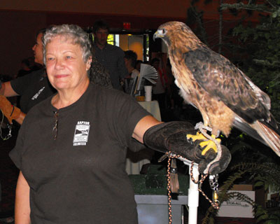 Volunteer with Birds of Prey