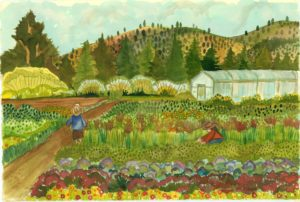 New Exhibit - Painting Oregon's Harvest: The Art of Kathy Deggendorfer @ Columbia Gorge Discovery Center | The Dalles | Oregon | United States