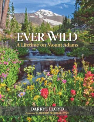 Ever Wild cover low-res