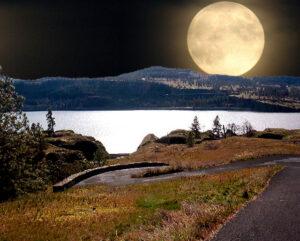 Harvest Moon Walk