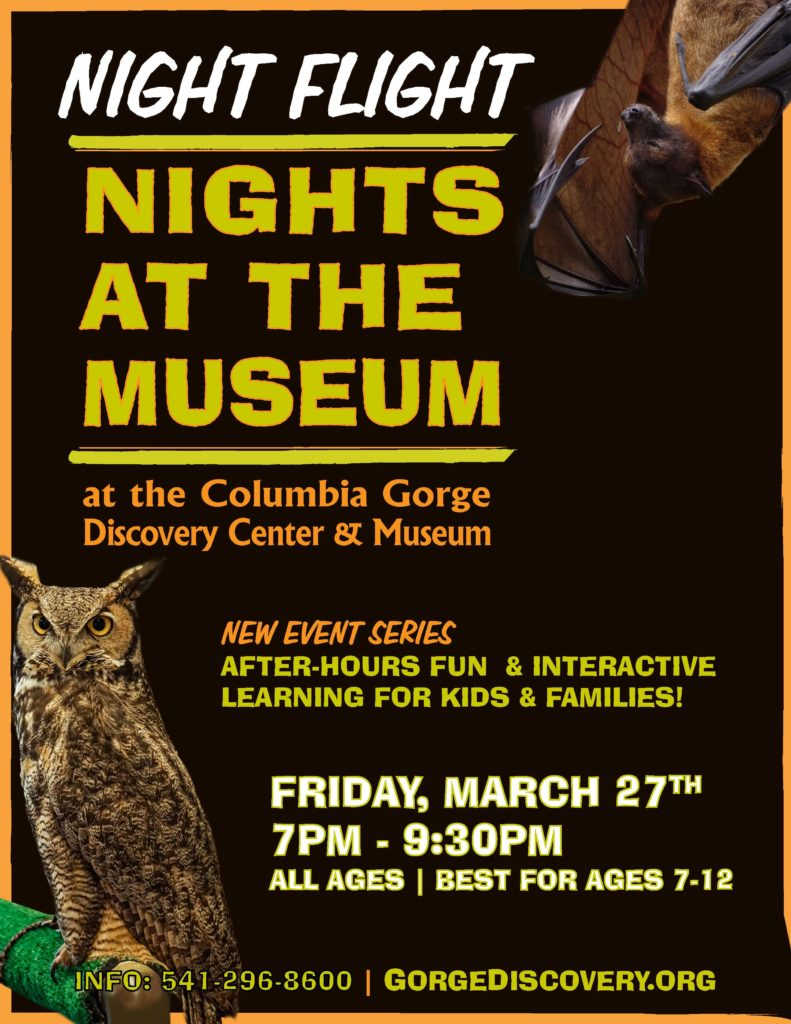 Nights at the museum flight at night poster