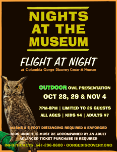 nights at the museum flight at night fall owl presentation