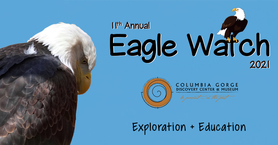 columbia river gorge eagle watch 2021