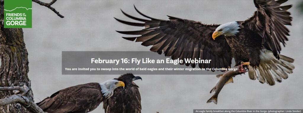 gorge friends eaglewatch webinar
