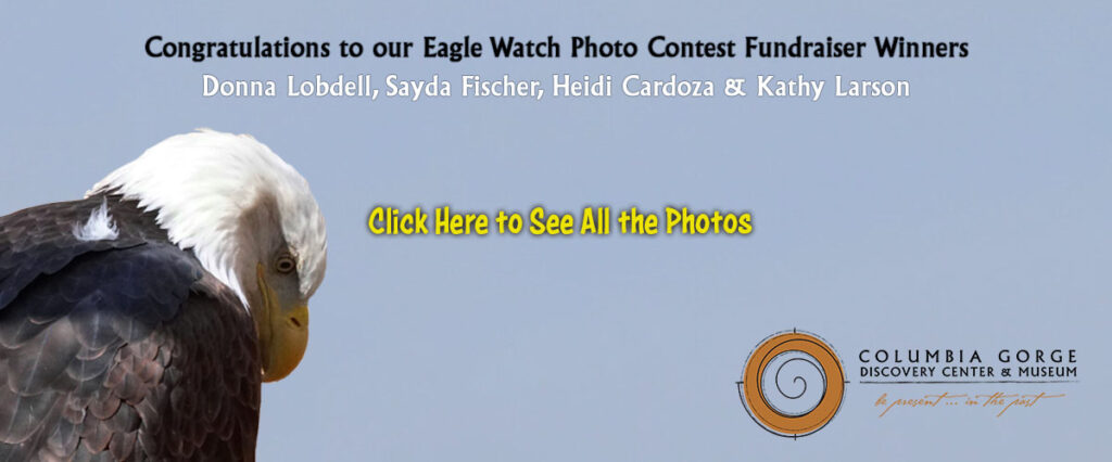 columbia gorge discovery center eagle watch 2021 winners slider
