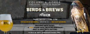 columbia gorge discovery center birds and brews after hours raptor event with pfriem