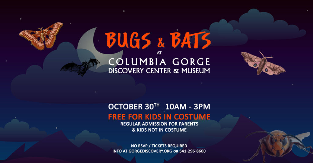 columbia gorge discovery center bugs and bats kids halloween event