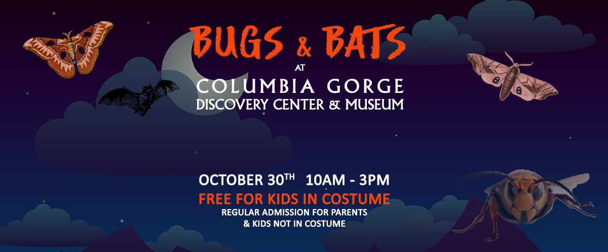 columbia gorge discovery center bugs and bats kids halloween event slider